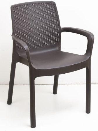 Regina műanyag karfás szék